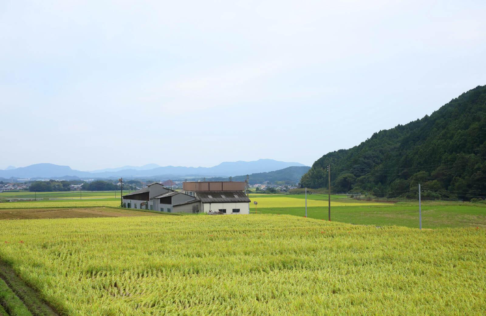写真:結伝社の工場風景